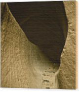 Canyon Steps Wood Print