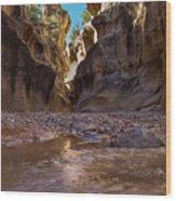 Canyon Stream Wood Print