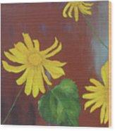 Canyon Sunflower Wood Print