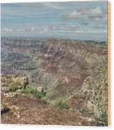 Canyon View From Navajo Point Wood Print