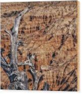Canyon View Nevada Wood Print