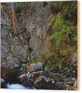 Canyon Wall Wood Print
