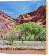 Canyon Wall. Wood Print