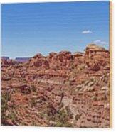 Canyonlands National Park - Big Spring Canyon Overlook Wood Print