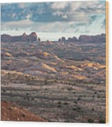 Arches National Park - Morning Wood Print