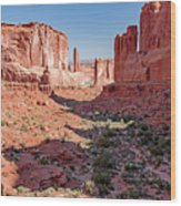Arches National Park, Moab, Utah Wood Print