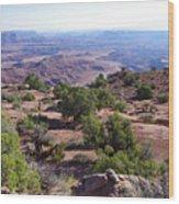 Canyonlands Park Utah Blue To Green Vista Wood Print