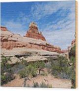 Canyonlands Spring Landscape Wood Print