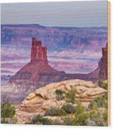 Canyonlands Utah Views Wood Print