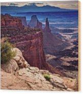 Canyonlands Vista  Wood Print