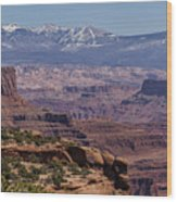 Canyons Of Dead Horse State Park Wood Print