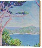Cap Ferat Provence Wood Print