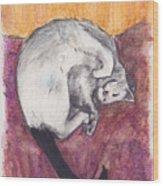 Cap Nap Wood Print