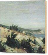 Cape Ai-todor Crimea 1879 21h33 5 Ivan Ivanovich Shishkin Wood Print