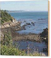 Cape Arago Wood Print