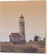 Cape Arago Li 6000 Wood Print