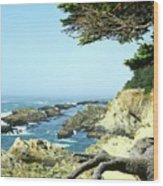 Cape Arago, Or. Wood Print