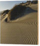 Cape Blanco Sands Wood Print