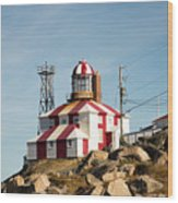 Cape Bonavista Lighthouse, Newfoundland, Canada Old And New Lamp Wood Print