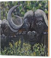 Cape Buffalo First Painting Wood Print