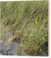 Cape Cod Beach 2 Wood Print