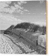 Cape Cod Beach Entry Wood Print