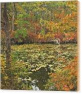 Cape Cod Kettle Pond Foliage Wood Print