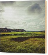 Cape Cod Marsh 1 Wood Print