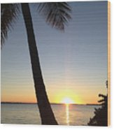 Cape Coral Winter Sunset  Wood Print