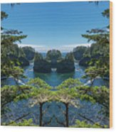 Cape Flattery Reflection Wood Print