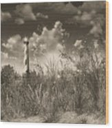 Cape Hatteras Lighthouse 3 Wood Print