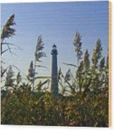 Cape May Light Autumn Wood Print