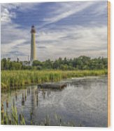 Cape May Lighthouse From The Pond Wood Print