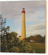 Cape May Lighthouse In Spring Wood Print