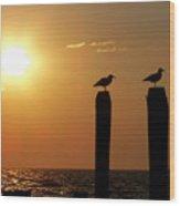 Cape May Morning Wood Print