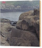 Cape Neddick Lighthouse York Maine Wood Print