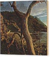 Cape Perpetua Sunset Wood Print
