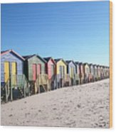 Cape Town Beachhuts Wood Print