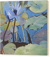 Capistrano Lillies Wood Print