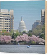Capitol Blossoms Wood Print