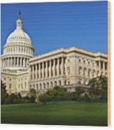Capitol Building Wood Print