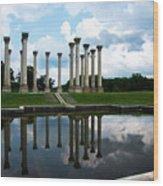 Capitol Columns, National Arboretum Wood Print