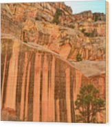 Capitol Gorge Desert Varnish Wood Print