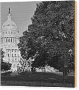 Capitol Hill Wood Print