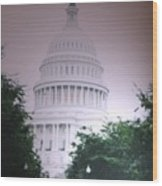 Capitol In Pink Wood Print