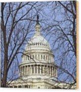 Capitol Wood Print