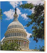 Capitol Of The United States Wood Print