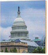 Capitol Over The Botanical Garden Wood Print