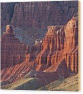 Capitol Reef 0706 Wood Print