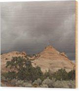 Capitol Reef 9471 Wood Print
